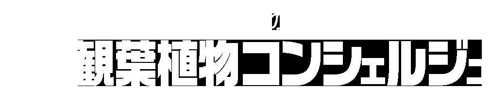 グリーンテックの観葉植物コンシェルジュ