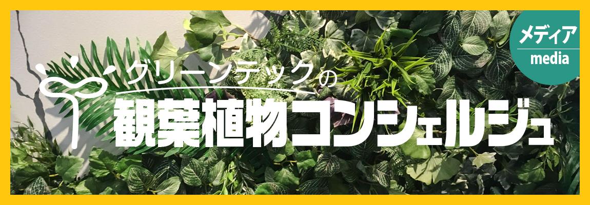 観葉植物コンシェルジュ